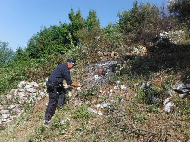 Carabinieri Forestali - S. Agata dei Goti