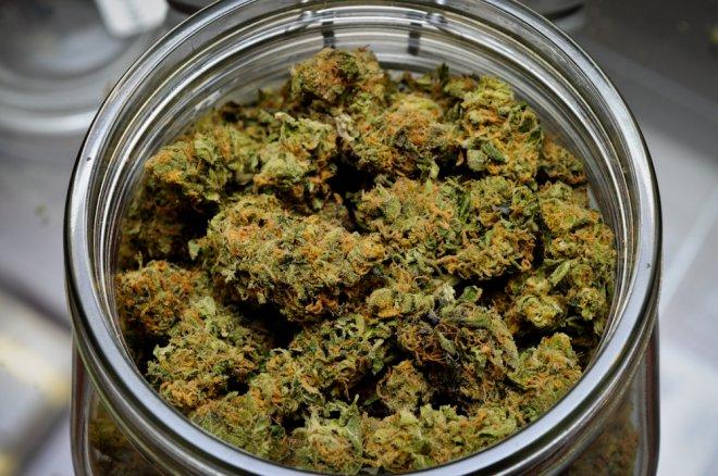 Marijuana sequestrato (foto di archivio)
