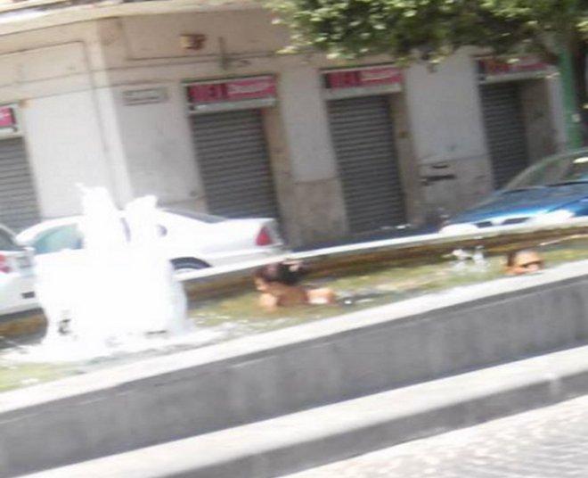 Bagno nella fontana align=