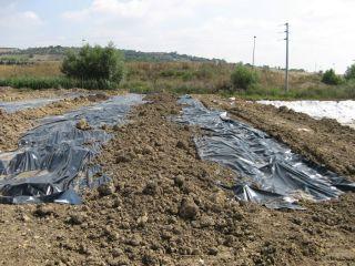 Il sito provvisorio di stoccaggio rifiuti a Piano Borea