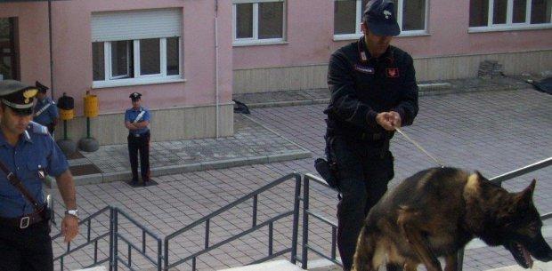 Controlli antidroga dei carabinieri nelle scuole