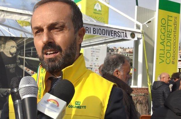 Gennarino Masiello (Coldiretti)