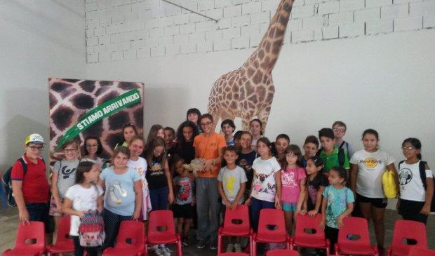 Bambini zoo