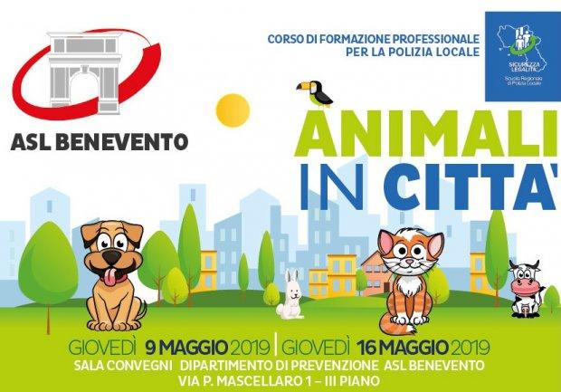 Animali in citta'