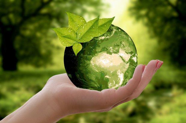 Ambiente. Pianeta Terra