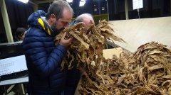 Gennarino Masiello, presidente ONT Italia, cooperativa di produttori del tabacco