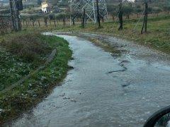 Foto Comitato Nord Es Benevento