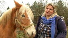 Salute. Lavorare con i cavalli per superare il tumore al seno