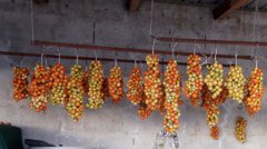 Foto: slowfood - Pomodorino verneteca sannita