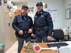 Polizia. Sequestro droga a Ceppaloni