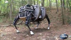 Tecnologia. Esercito USA abbandona il progetto del mulo robot: troppo rumoroso