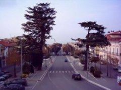 Viale Spinelli - San Giorgio del Sannio