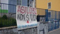 Asilo31