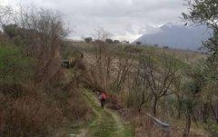 Bici vigneti Castelvenere