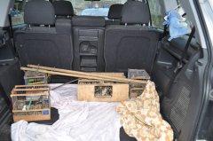 Gabbie e richiami sequestrati ai bracconieri (foto di archivio)