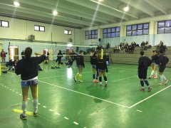iReplace Accademia Volley