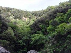 Resti archeologici sul Monte Pugliano