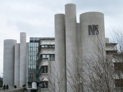 palazzo Inps_ via N. Calandra