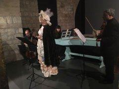 Concerto Arcos
