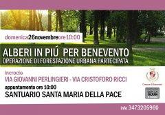 Comune di Benevento, iniziativa piantumazione alberi