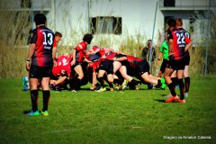 Rugby. Dragoni Sanniti