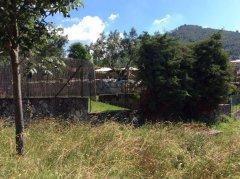 Bambina di 10 anni scompare, trovata senza vita in una piscina a San Salvatore Telesino
