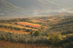 Sannio paesaggio rurale