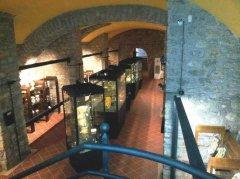 Cerreto Sannita. Museo Civico della Ceramica