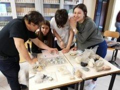 IIS Telesi@ - Scuola di archeologia