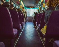 Autobus 2015