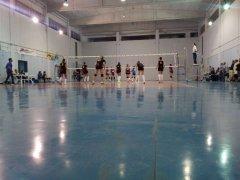 Olimpia - Volare:  Coppa Campania