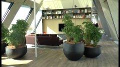 Milano, inaugura la Microsoft House