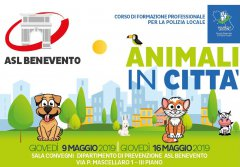 Animali in citta'